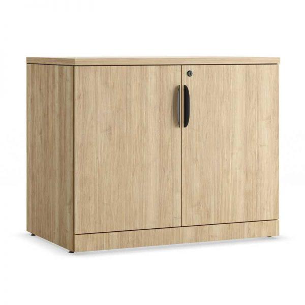 Locking Storage Cabinet