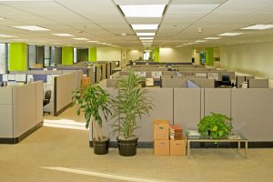 Considerations When Buying Used Cubicles