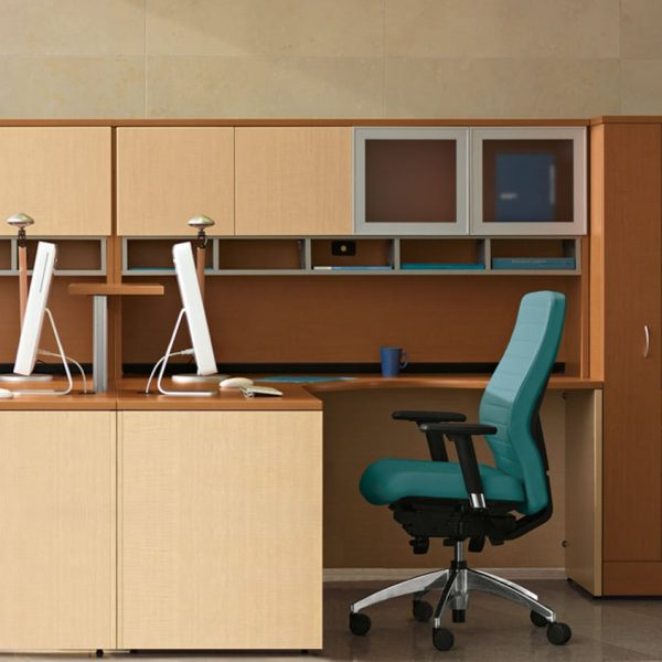Adaptabilities Desk & Workstation Options