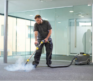 Sanitizing and cleaning - steaming carpets
