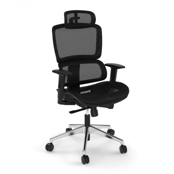 Ergonomic Office Chair - Performance Mesh Pilot